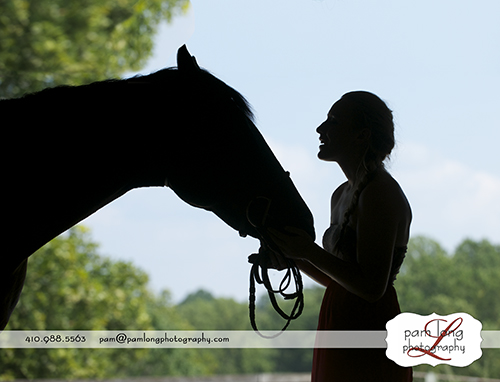 Silhouetted horse and girl High school senior photographer in Howard County Maryland