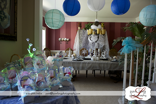 Details photos of Frozen birthday party Howard County Event photographer