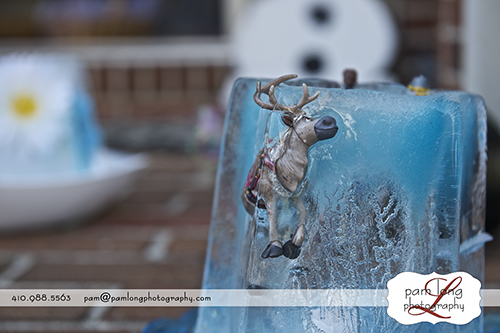 Frozen scenic Howard County photographer in Ellicott City
