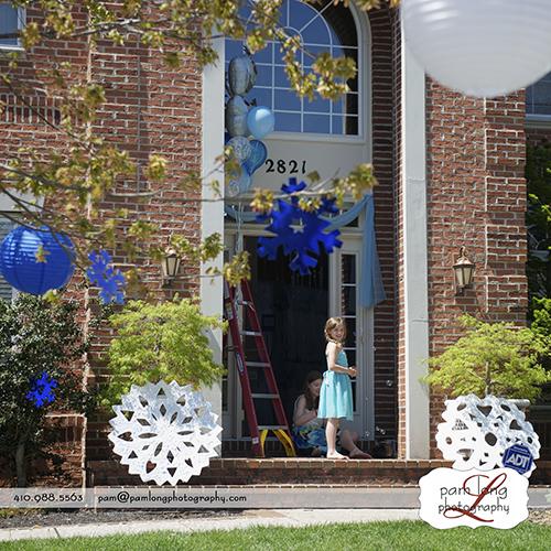Frozen Themed Birthday Party Ideas Ellicott City MD Photographer