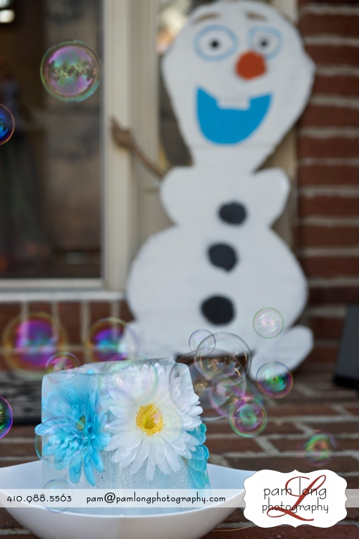 Ice sculpture Olaf bubles Frozen birthday party Ellicott City photographer